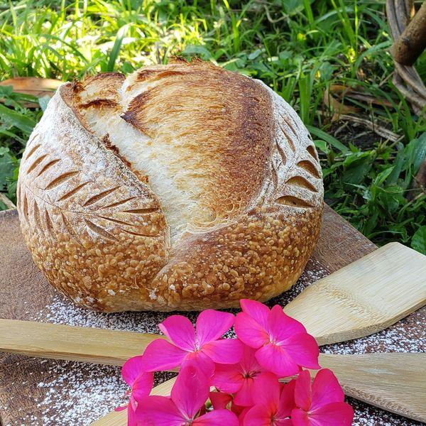 Imagem principal do produto Consultoria e preparo de pães de longa fermentação