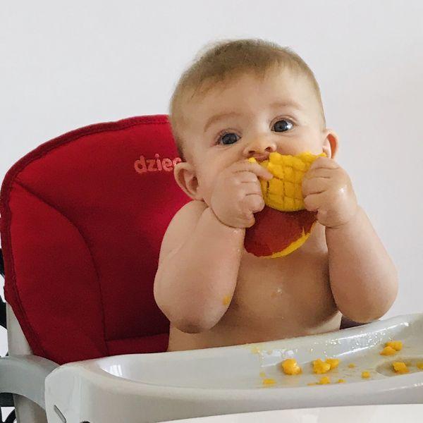 Imagem principal do produto Do Colo à Mesa, como iniciar a Introdução Alimentar!