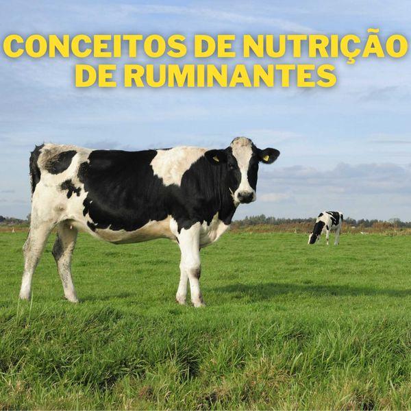Imagem principal do produto Conceitos básicos de nutrição de ruminantes