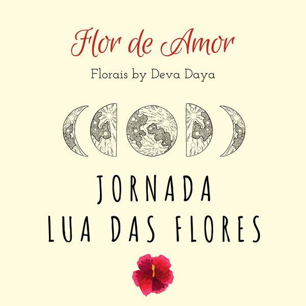 Imagem principal do produto Terapia Floral: Jornada Lua das Flores