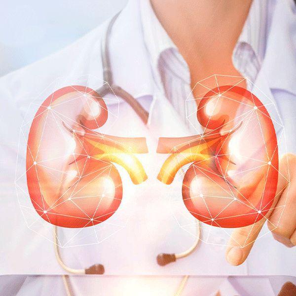 Imagem principal do produto Exames Laboratoriais no paciente renal