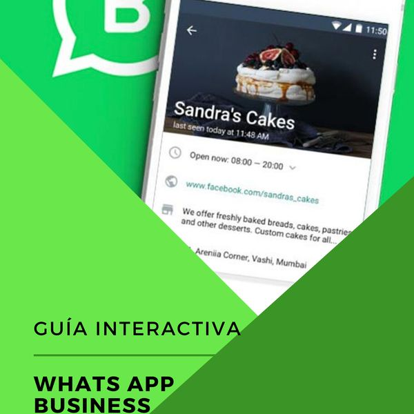 Imagem principal do produto Domina Whats App Business