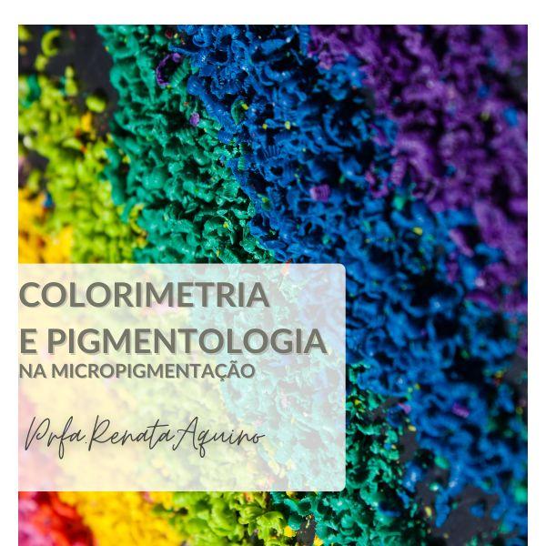 Imagem principal do produto Colorimetria e Pigmentologia na Micropigmentação - tudo o que você precisa saber