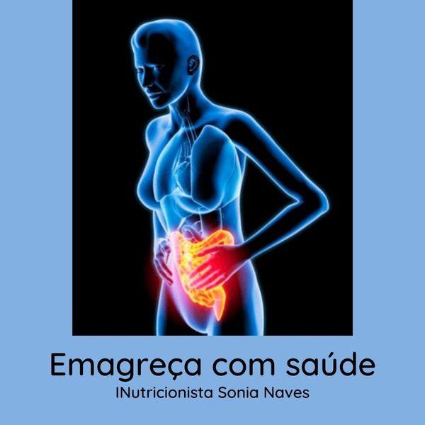 Imagem principal do produto Ebook - Emagreça com Saúde