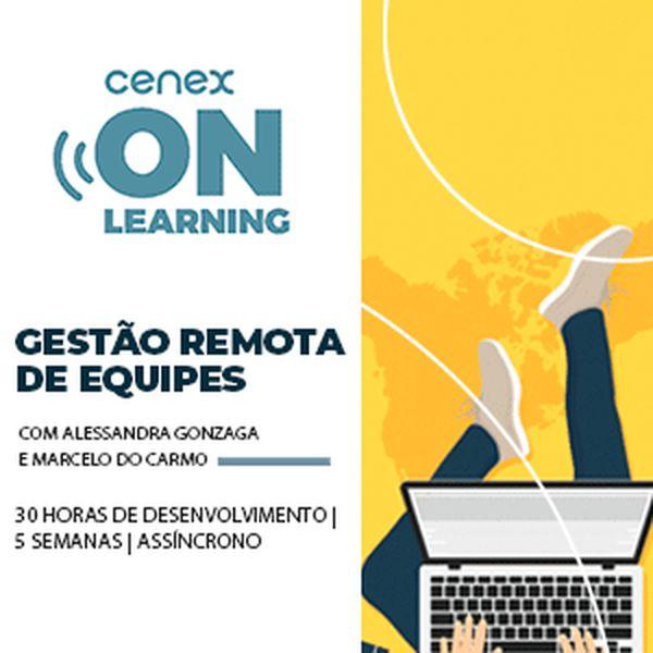 Imagem principal do produto Gestão Remota de Equipes