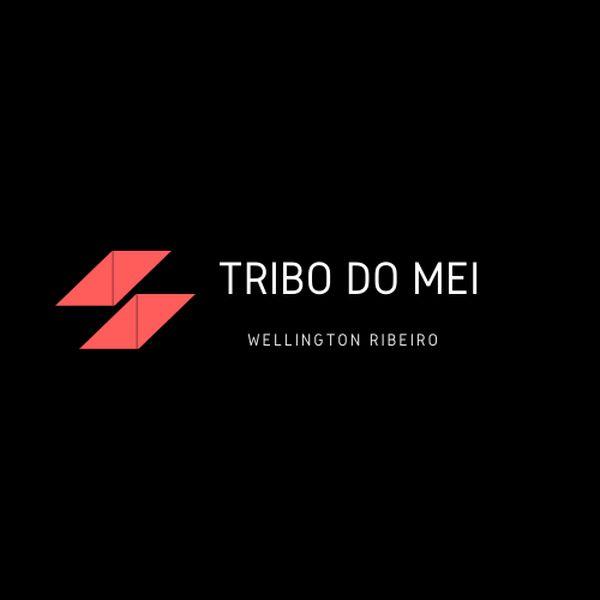 Imagem principal do produto A TRIBO DOS MICROEMPREENDEDORES INDIVIDUAIS