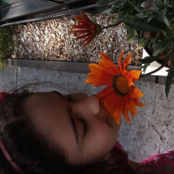 Imagem principal do produto Consulta floral con niños