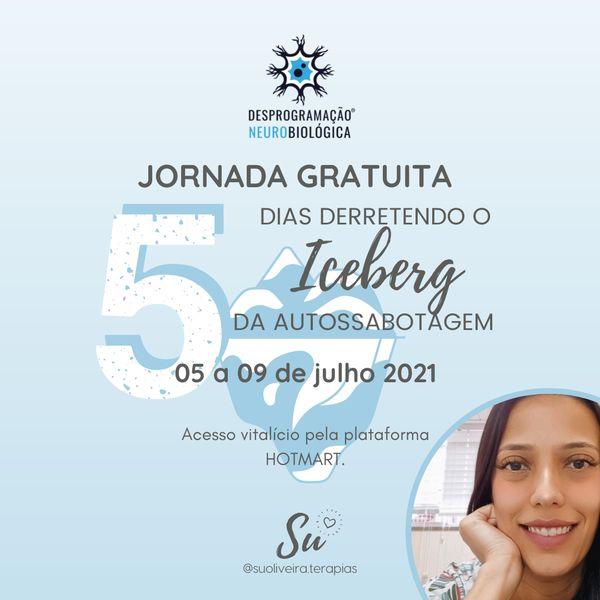 Imagem principal do produto JORNADA DESPROGRAMANDO O ICEBERG DA AUTOSSABOTAGEM - VIP