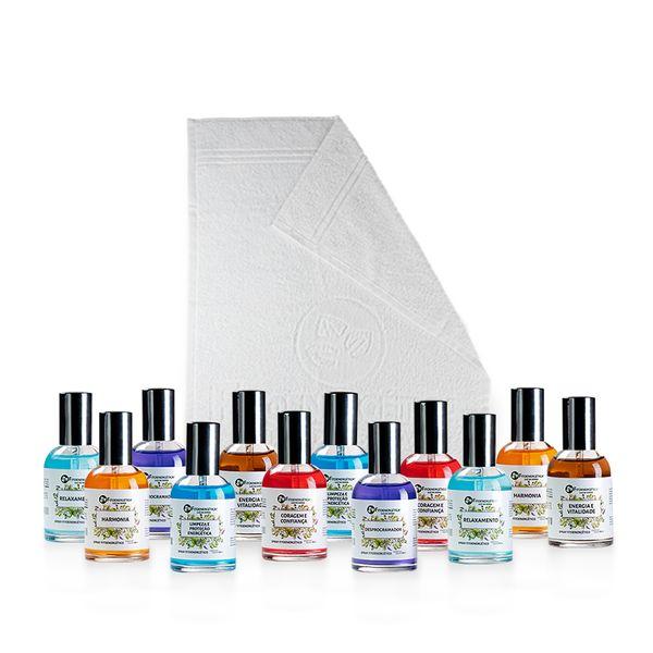 Imagem principal do produto Kit 12 Sprays + Brinde (Toalha)