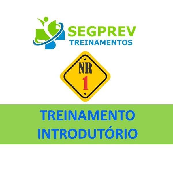 Imagem principal do produto Treinamento Introdutório (NR 1) sobre Segurança e Saúde do Trabalhador / Treinamento Inicial