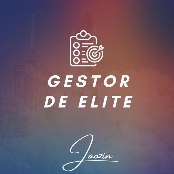 Imagem principal do produto Gestor de Elite c/ Enrico Beltrão