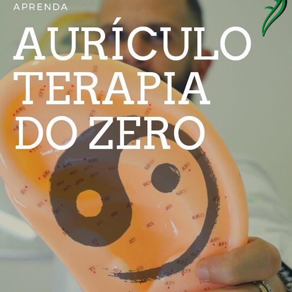 Imagem principal do produto Aurículoterapia do Zero