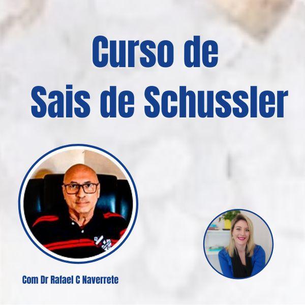 Imagem principal do produto Curso de Sais de Schussler