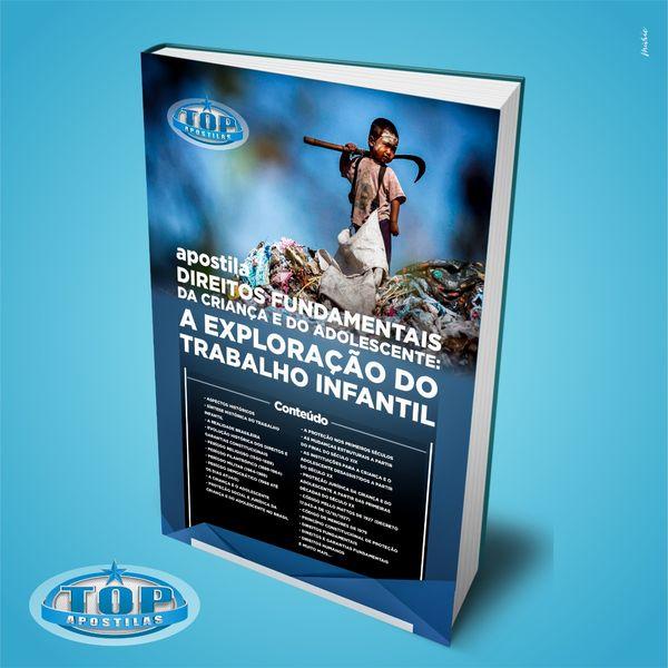 Imagem principal do produto Ebook Direitos Fundamentais da Criança e do Adolescente e a Exploração do Trabalho Infantil