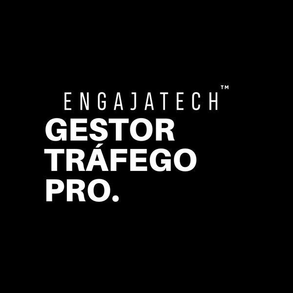 Imagem principal do produto Gestor de Tráfego Pro