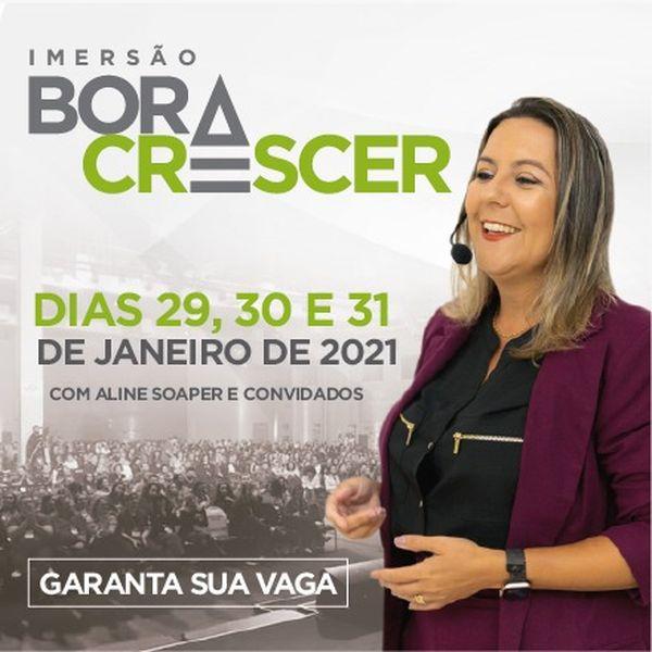 Imagem principal do produto Bora Crescer - Imersão Virtual