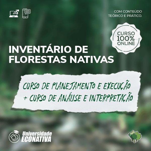 """Imagem principal do produto Inventário de Florestas Nativas: """"Curso de Planejamento e Execução"""" + """"Curso de Análise e Interpretação"""""""