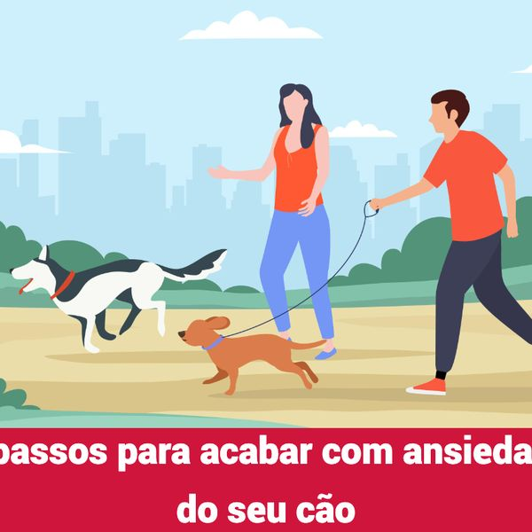 Imagem principal do produto 5 passos para acabar com ansiedade do seu cão