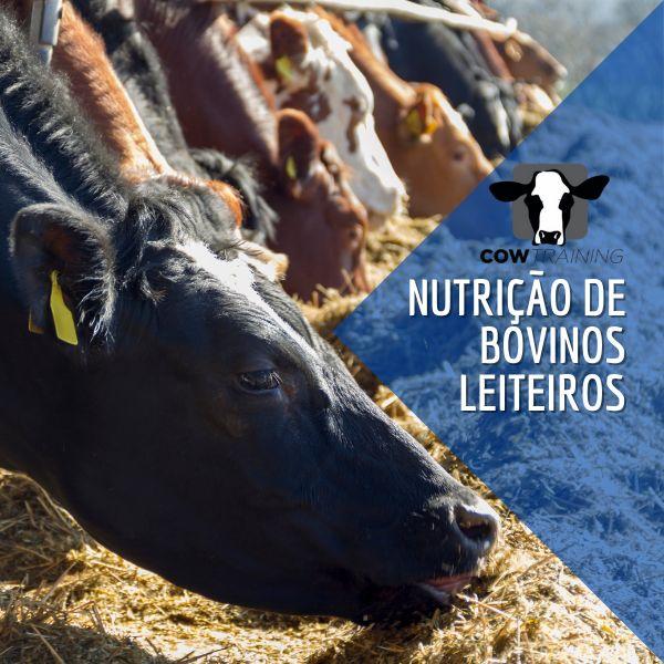 Imagem principal do produto Nutrição e Manejo de Bovinos Leiteiros no Período de Transição
