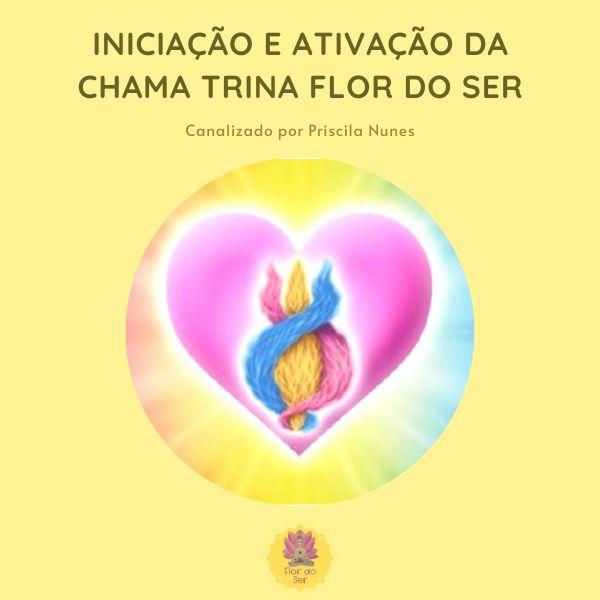 Imagem principal do produto Iniciação e ativação da Chama Trina Flor do Ser