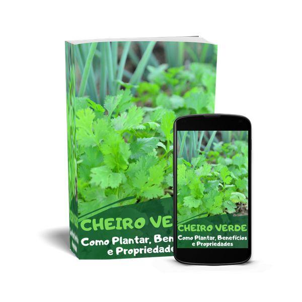 Imagem principal do produto Cheiro Verde - Tempero verde para todos os pratos.