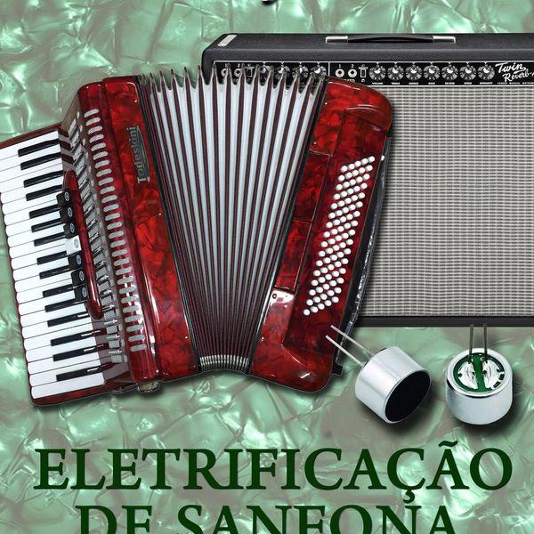 Imagem principal do produto Eletrificação de sanfonas
