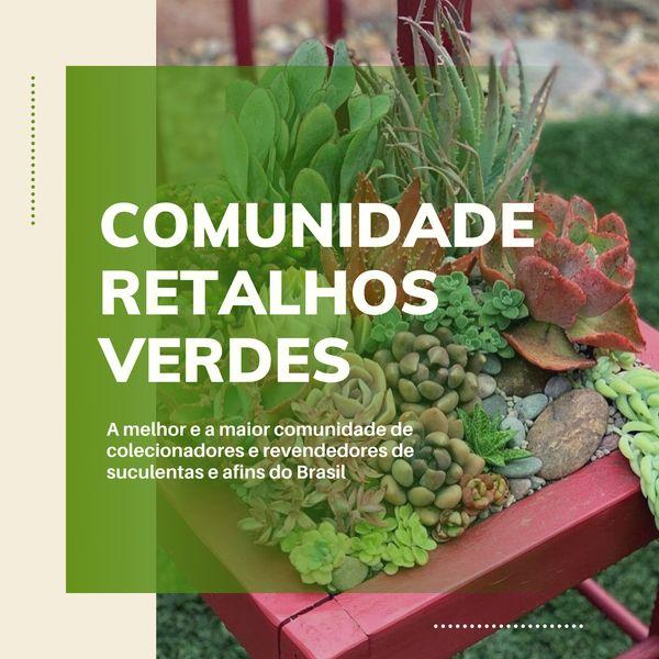 Imagem principal do produto Comunidade Retalhos Verdes