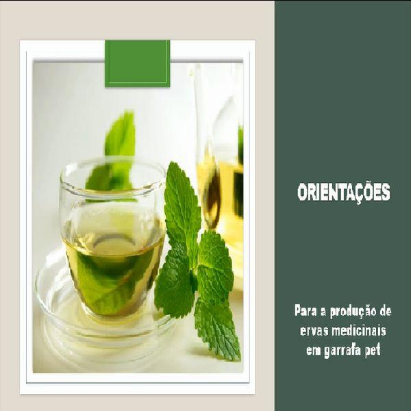 Imagem principal do produto Como montar um horta medicinal vertical em garrafa pet em casa
