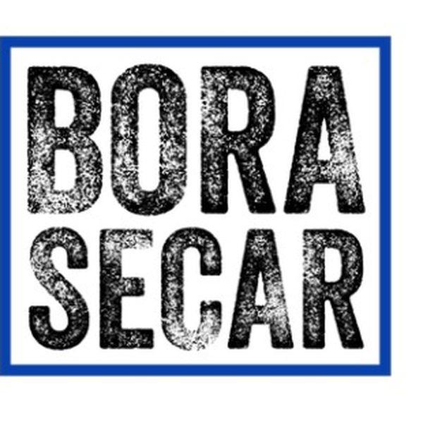 Imagem principal do produto Consultoria Bora Secar