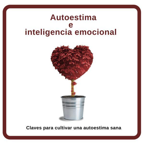 Imagem principal do produto Autoestima e inteligencia emocional. Claves prácticas para cultivar una autoestima sana