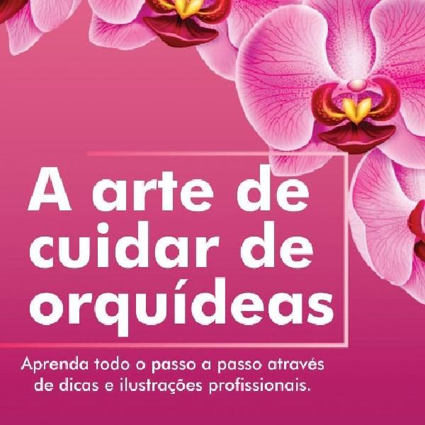 A arte de cuidar de orquídeas