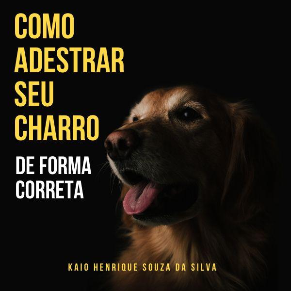Imagem principal do produto Como Adestrar Seu Cachorro de Forma Correta