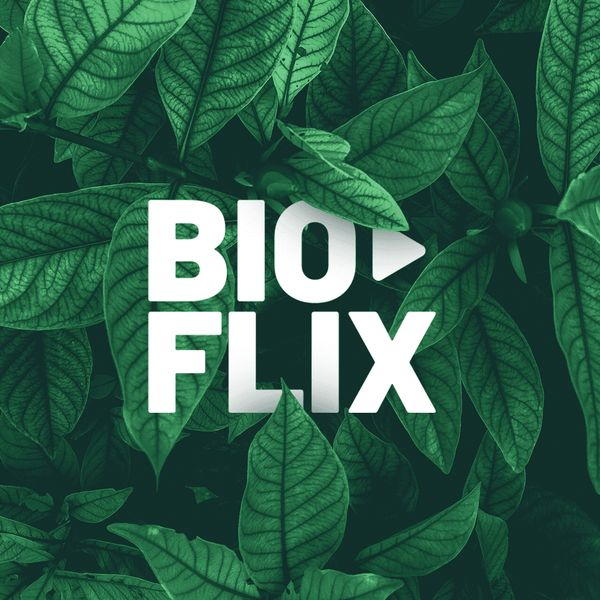 Imagem principal do produto Bioflix - O mundo na sua casa