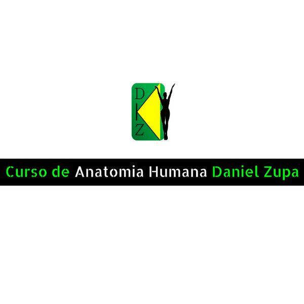 Imagem principal do produto Curso de Desenho Daniel Zupa