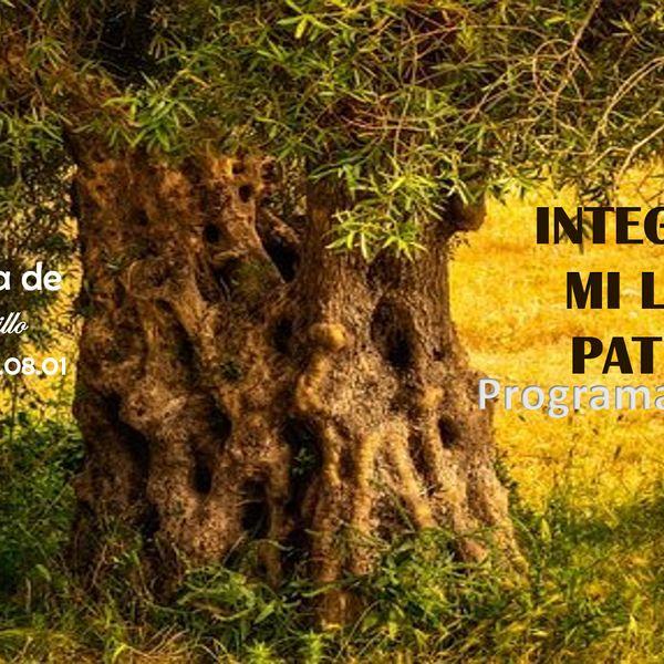 Imagem principal do produto INTEGRANDO MI LINAJE PATERNO