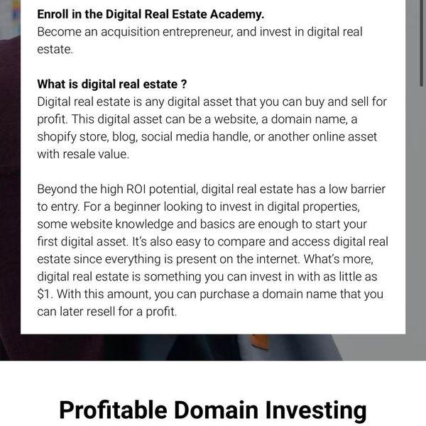 Imagem principal do produto Profitable Domain Investing