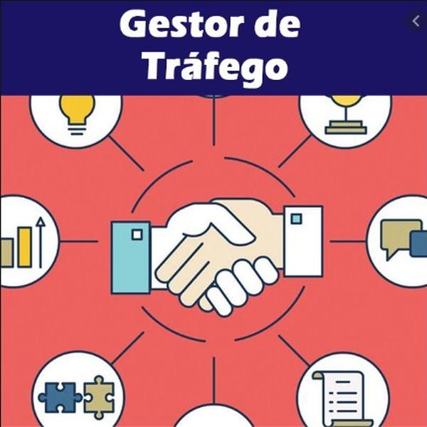 Imagem principal do produto Curso de Tráfego para Negócios Locais