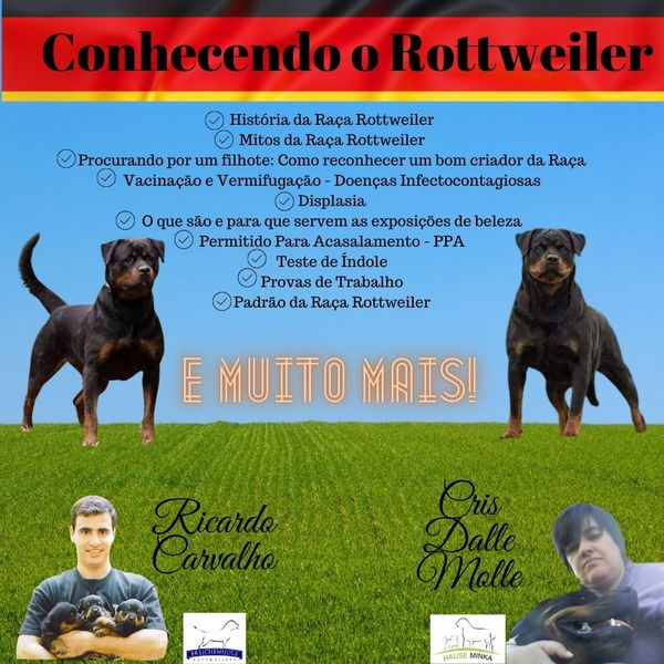Imagem principal do produto Conhecendo o Rottweiler
