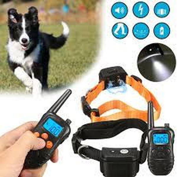 Imagem principal do produto Aprenda qual A Melhor coleiras de choque para Seu Cão