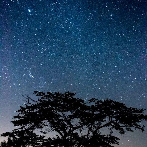 Imagem principal do produto Astrofotografia de Paisagem - curso online