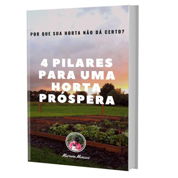 Imagem principal do produto 4 Pilares Para Uma Horta Próspera