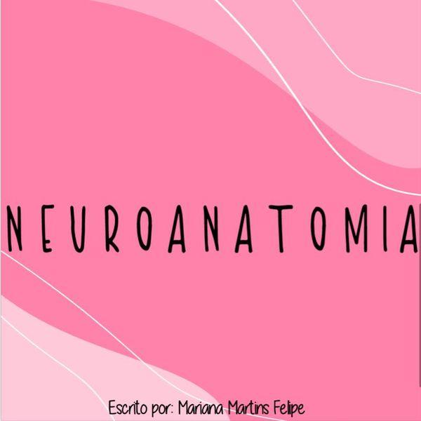 Imagem principal do produto Ebook de neuroanatomia