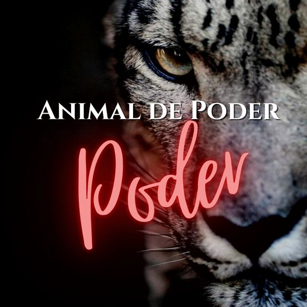 Imagem principal do produto Imersão Animal de Poder