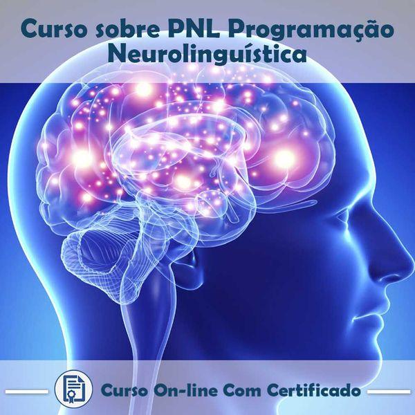 Imagem principal do produto Curso Programação Neurolinguística
