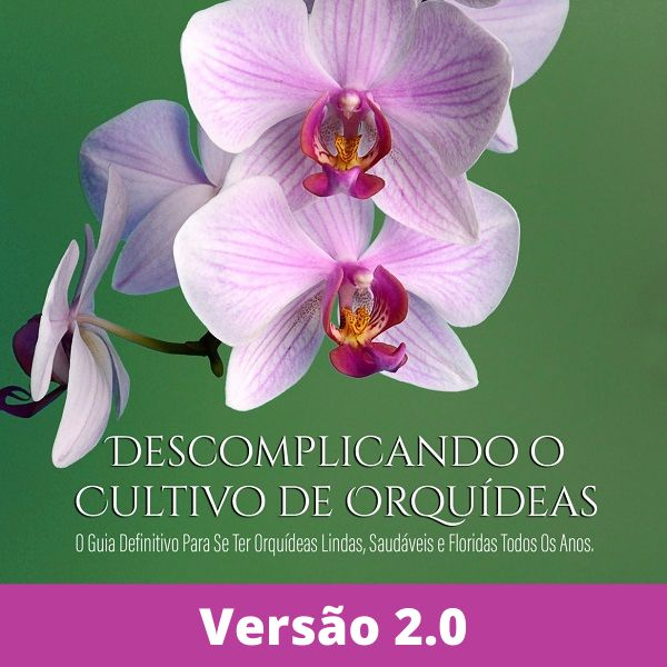 Imagem principal do produto Manual Descomplicando o Cultivo de Orquídeas 2.0