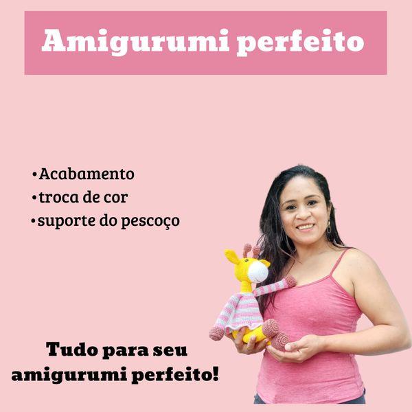 Imagem principal do produto Amigurumi perfeito