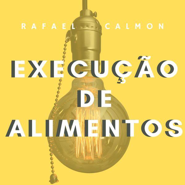 Imagem principal do produto EXECUÇÃO DE ALIMENTOS: TÉCNICAS E PROCEDIMENTOS