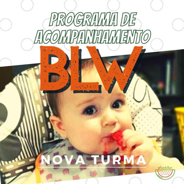 Imagem principal do produto Programa de Acompanhamento BLW - online