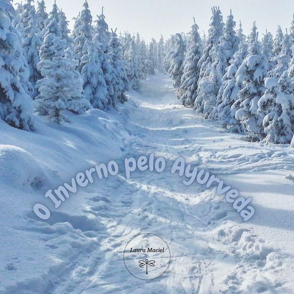 Imagem principal do produto Inverno pelo Ayurveda, receitas e autocuidado corporal