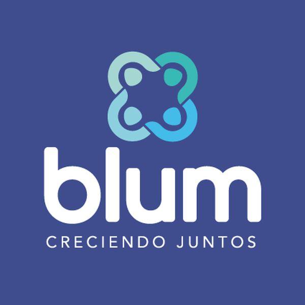 Imagem principal do produto Blum - SI